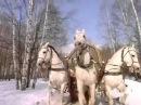 Кто пел песню в чародеях три белых коня