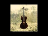 Saltillo - Ganglion (Full Album)