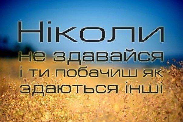 Активисты создали сквер на месте скандальной стройки в Киеве - Цензор.НЕТ 6402