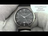 Мужские наручные часы Skagen 233XXLSLB