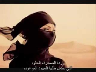 Sting - Desert Rose مترجمه عربي