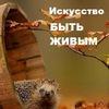 Осенний Неформальный Психологический Фестиваль 2