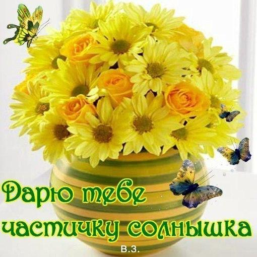 http://cs623330.vk.me/v623330879/2409b/h9810yU6RaE.jpg