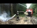 Як буковинські пожежники й лісівники вчилися гасити лісові пожежі