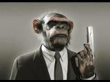 Monkey City (Original Mix) - Patryk Molinari