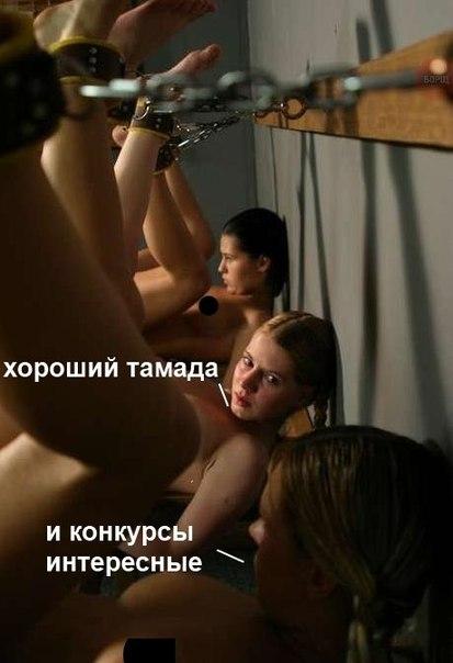 http://cs623331.vk.me/v623331389/2d96f/Or__O74NvjA.jpg