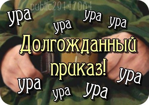http://cs623331.vk.me/v623331577/2270a/8SypAQkLVk8.jpg