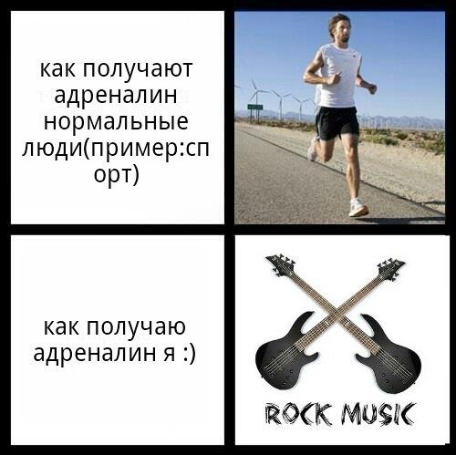 Ястреб Гудзонский | Владимир