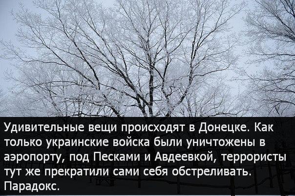 http://cs623331.vk.me/v623331713/162ff/vUXwODR07dU.jpg