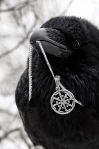 скачать торрент черный ворон - фото 8