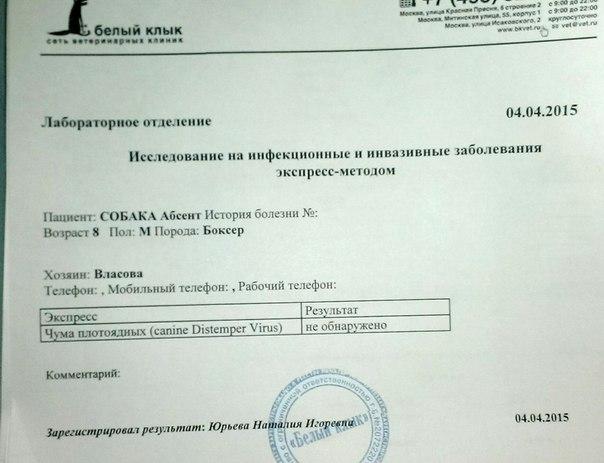 Москва. Абсент, кобель, 08.07.2005 г.  Eo1j9riPGCw