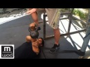 Setting the shoulder for bench | Feat. Kelly Starrett | MobilityWOD