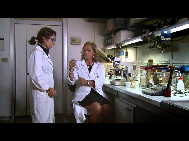 Загадки и тайны семьи Медичи 2 серия 2013 Документальный HD