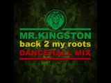 Mr.Kingston  back 2 my roots mix