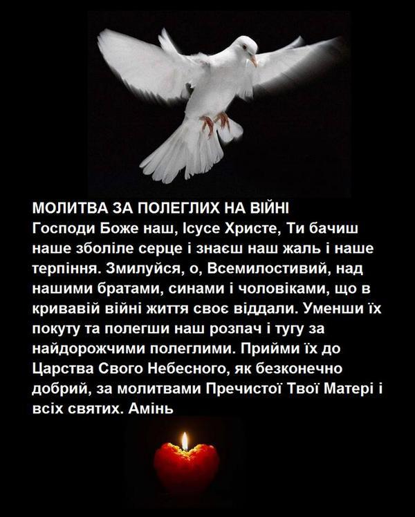 На Днепропетровщину доставлены тела 8 воинов, ориентировочно погибших под Дебальцево, - ОГА - Цензор.НЕТ 8581