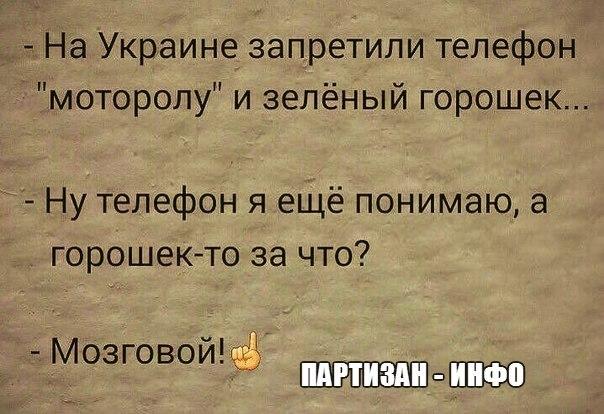 http://cs623417.vk.me/v623417055/222c7/ALNgwdONeQk.jpg
