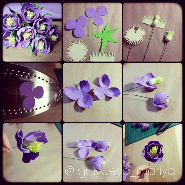 Б житкова цветок