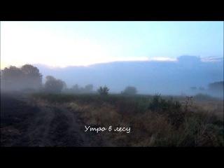Коп монет на бывшем совхозном поле видео 2014  Находки копателя Зоркий 100