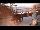All Of Me John Legend Lindsey Stirling Subtitulada