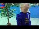 ✔ Кукла Беби Борн и Ярослава на выставке Бабочек. Baby Born doll is on the exhibition of butterflies
