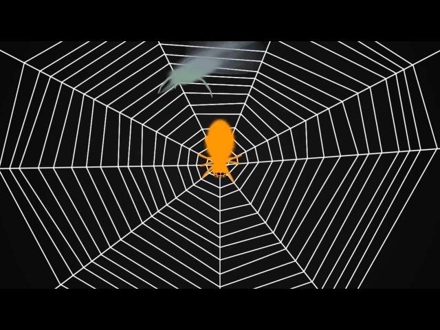 Пауки настраивают паутину как гитару