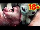 18+ ЖЕСТКОЕ ВИДЕО | СОБАЧЬИ БОИ | слабонервным не смотреть!!! 18+