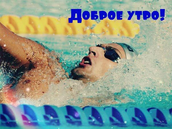 чемпионат мира по плаванию 2013 википедия
