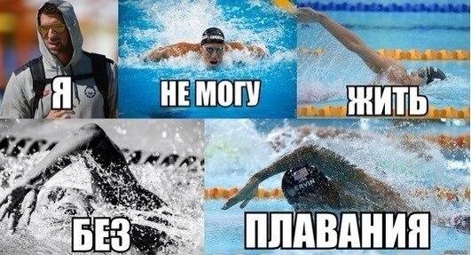 чемпионат мира по плаванию 2013
