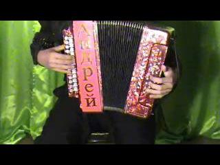 На теплоходе музыка играет Гармонист Алексеев Андрей