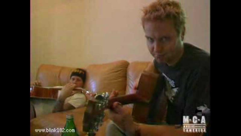 Blink-182 I'm Gay