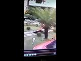 Imagens do exato momento do assassinato de Amanda Bueno, Ex dan