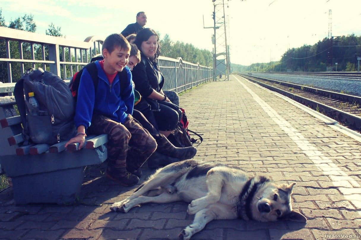 Станция Перегон