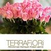 TerraFiori_Иркутск | Цветы | Свадьба