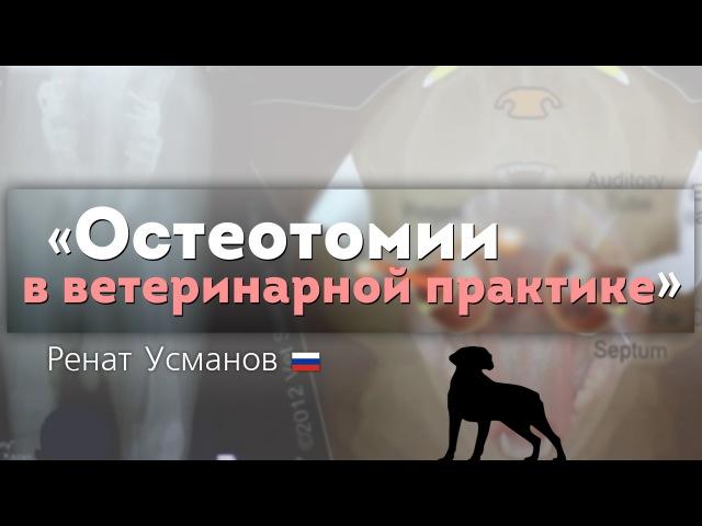 Остеотомии в ветеринарной практике