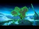 Fungus Funk Microcosmos 2012 remix album edit Video Clip Psychedelic Psy Dark GOA Trance