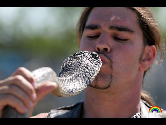 Anatomy of a Snake Bite - Анатомия змеиного укуса