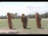 Ratatat - Wildcat Music Video