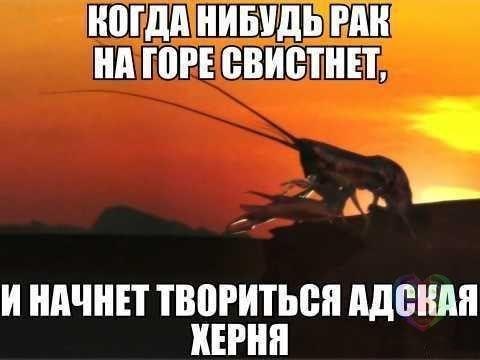 http://cs623421.vk.me/v623421567/9611/EfsxTJ-NyGc.jpg