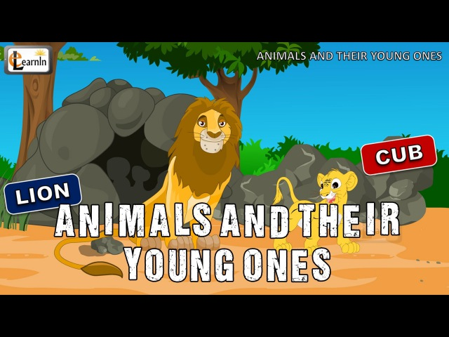 Animals and their Young Ones The Baby Animals Song Mother and baby animals elearnin
