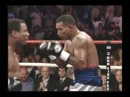 Shane Mosley's Career Highlights