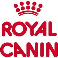 royal canin 2 1