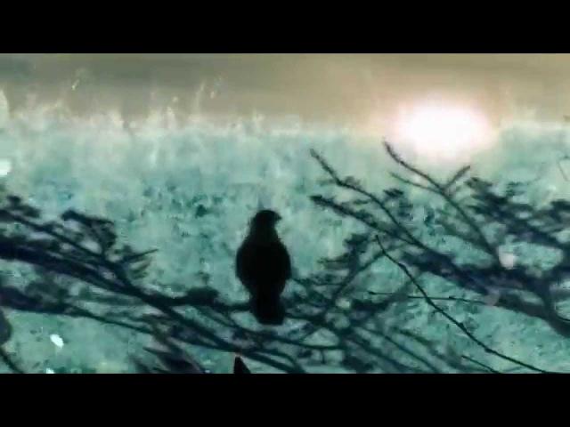 AGh0Ri TanTriK - Necrophagy (Enichkin Rmx) / Video Clip Psychedelic Psy Dark GOA Trance