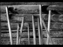 ПЕСНИ ВОЙНЫ.Гармонист.Музыкант. Военные фото.Плен.С.Косточко.История судьбы.