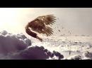 Ivan Torrent - Icarus feat. Julie Elven