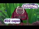 Лунтик 402 серия Признание таланта