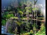 А Лядов Волшебное озеро Проект Татьяны Большаковой
