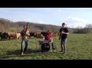 Moon Hooch Cattle Dance Party