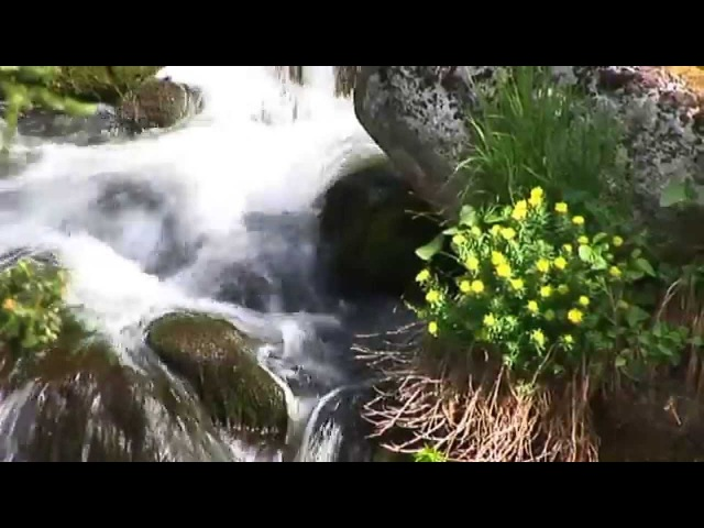 Природный парк ЕРГАКИ. Студия РусЭкоФильм, 2010г