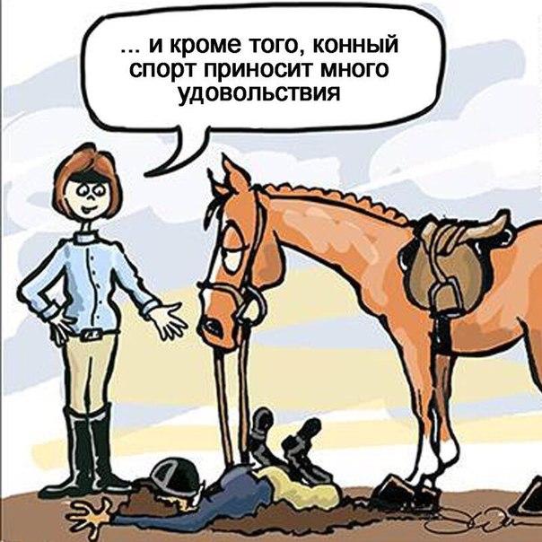 лошадей,верховая езда