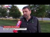 Life78: В Петербурге разработали приложение для борьбы с парковкой на газонах